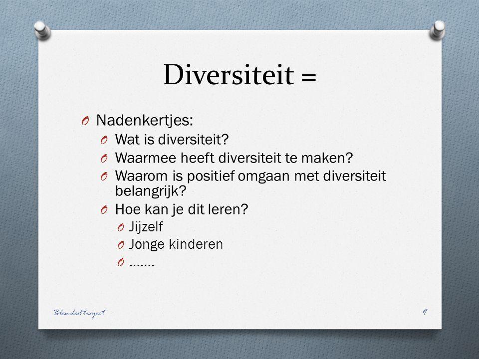 Diversiteit = O Nadenkertjes: O Wat is diversiteit.