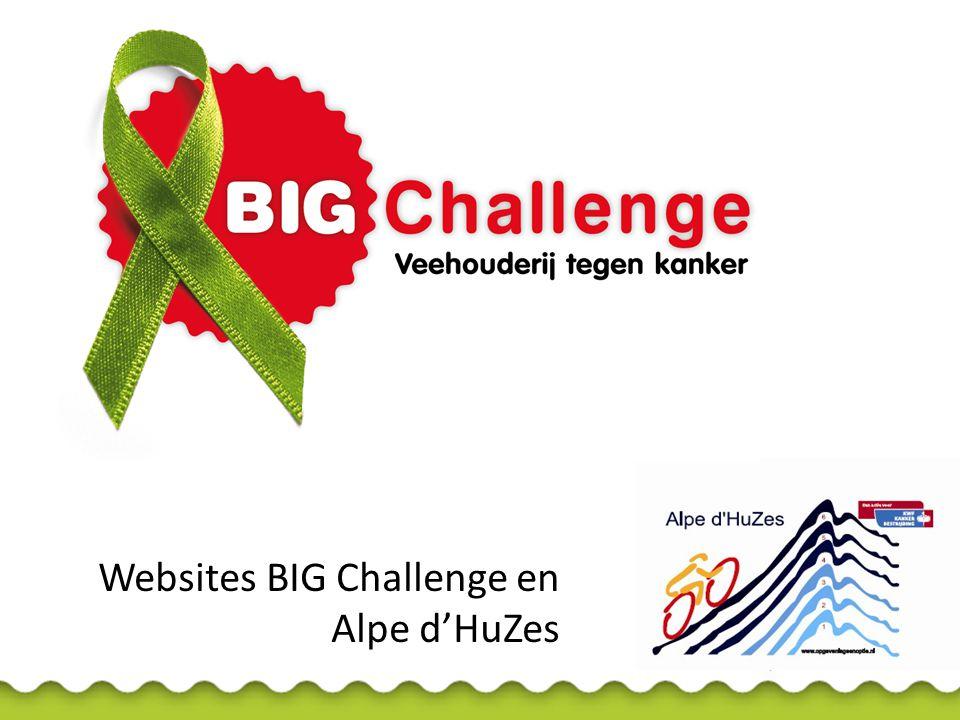 www.bigchallenge2013.nl • Toegang tot actiepagina's deelnemers Alpe d'HuZes • Teller sponsorbedrag BIG Challenge totaal • Overzicht sponsors en partners • Nieuws BIG Challenge • Foto's, filmpjes, logo's, krantenberichten • Agenda bijeenkomsten en acties