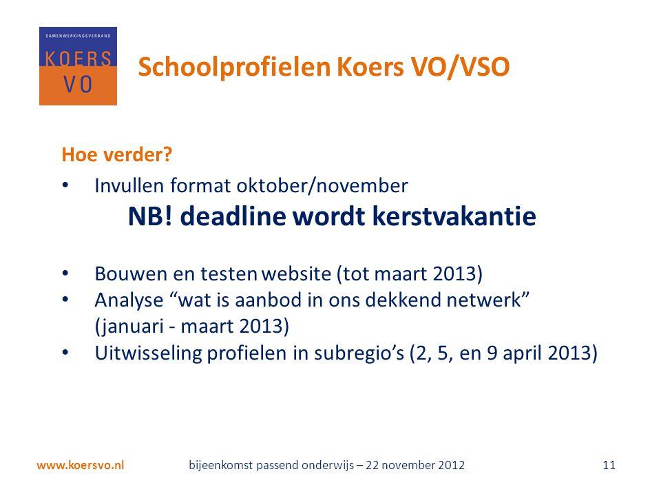 """Hoe verder? • Invullen format oktober/november NB! deadline wordt kerstvakantie • Bouwen en testen website (tot maart 2013) • Analyse """"wat is aanbod i"""