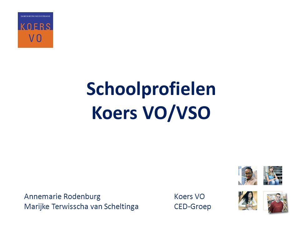 Van OZP naar SOP • Start in 2010, ontwikkelen format profiel OZP 1.0 • September 2011 door alle VO scholen ingevuld SOP 2.0 • Gebruiken ervaringen OZP • Aanpassen op wet en referentiekader • Geschikt maken voor gebruik door VSO scholen Schoolprofielen Koers VO/VSO www.koersvo.nl bijeenkomst passend onderwijs – 22 november 2012 5