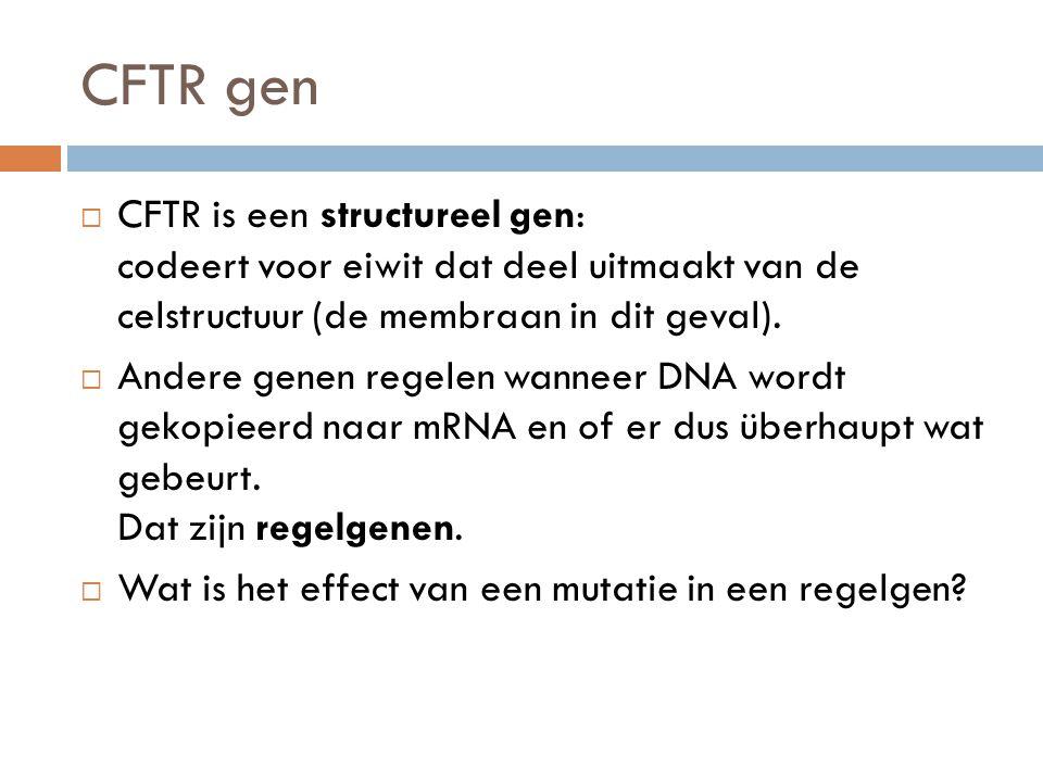 CFTR gen  CFTR is een structureel gen: codeert voor eiwit dat deel uitmaakt van de celstructuur (de membraan in dit geval).