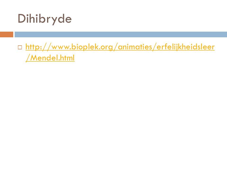 Dihibryde  http://www.bioplek.org/animaties/erfelijkheidsleer /Mendel.html http://www.bioplek.org/animaties/erfelijkheidsleer /Mendel.html