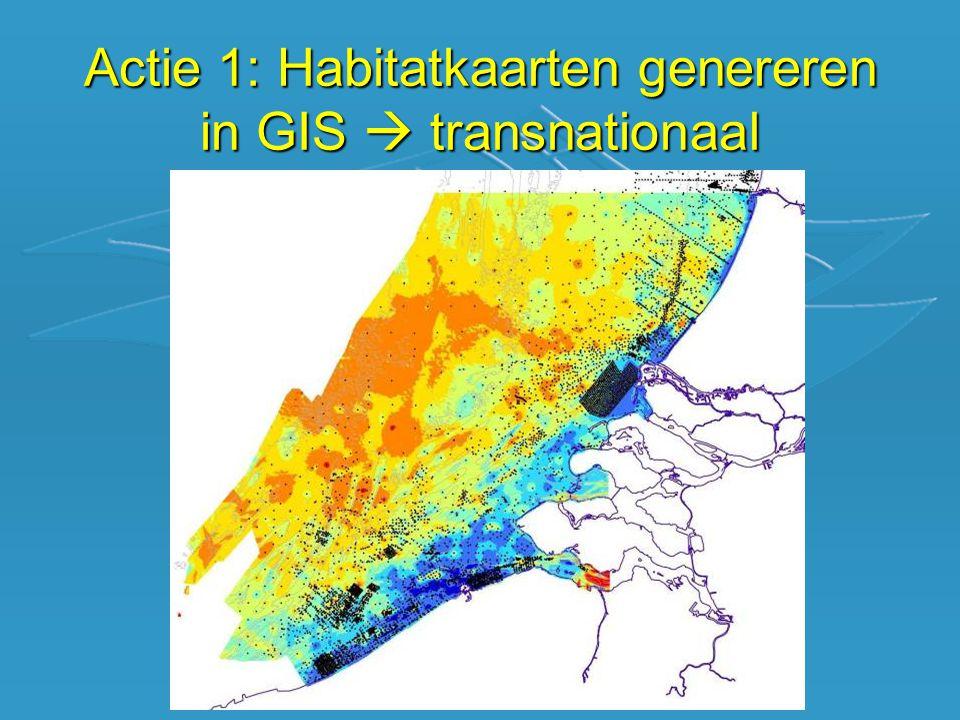 Actie 1: Habitatkaarten genereren in GIS  transnationaal