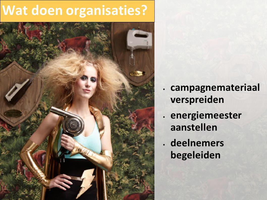 Wat doen organisaties? • campagnemateriaal verspreiden • energiemeester aanstellen • deelnemers begeleiden