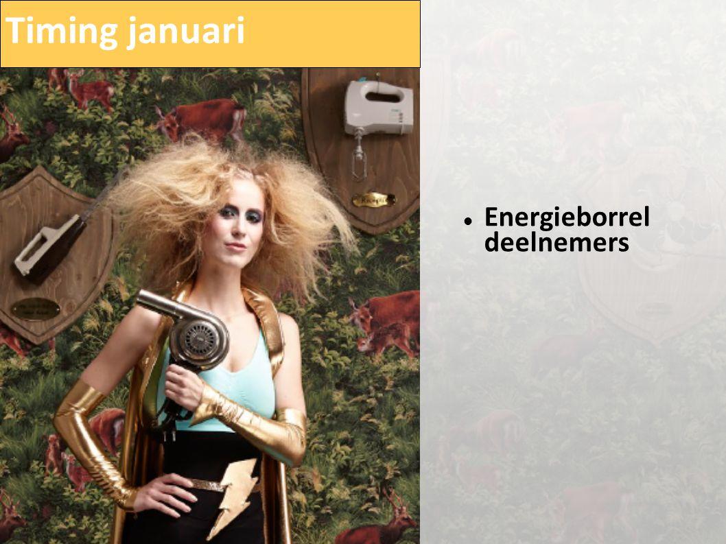 Timing januari  Energieborrel deelnemers