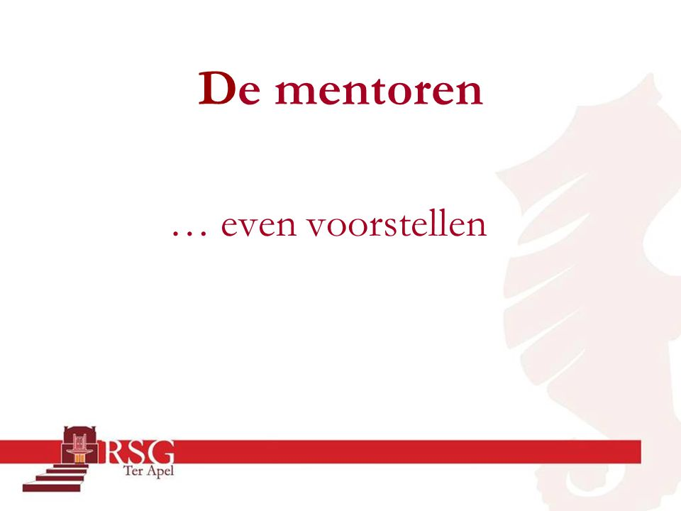 De mentoren … even voorstellen