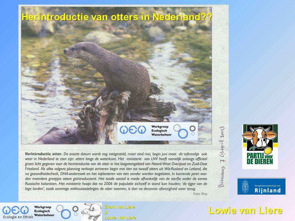 Otter dood in hol van muskusrat 'Uitzetten otters onverantwoord' De Levende Natuur 108, 199-203 (2007) Inteelt bedreigt toekomst otters in de Weerribben Brabants Dagblad Otter bij Waspik doodgereden | 15-07-2008 14:02 Verkeer gevaar voor de comeback van de otter De otter voelt zich kiplekker in de Overijsselse natuur Ecologie en Ethiek De Stentor Otter afgemaakt na aanrijding Staatsbosbeheer vernietigt otter nest http :// www.dierennieuws.nl/nw/art/200804/nw64160.htm De Telegraaf ma 26 nov 2007, 13:22 Aangifte dierenmishandeling otters www.terugkeer.nl http://www.otter.wur.nl/NL/Laatste+nieuws/