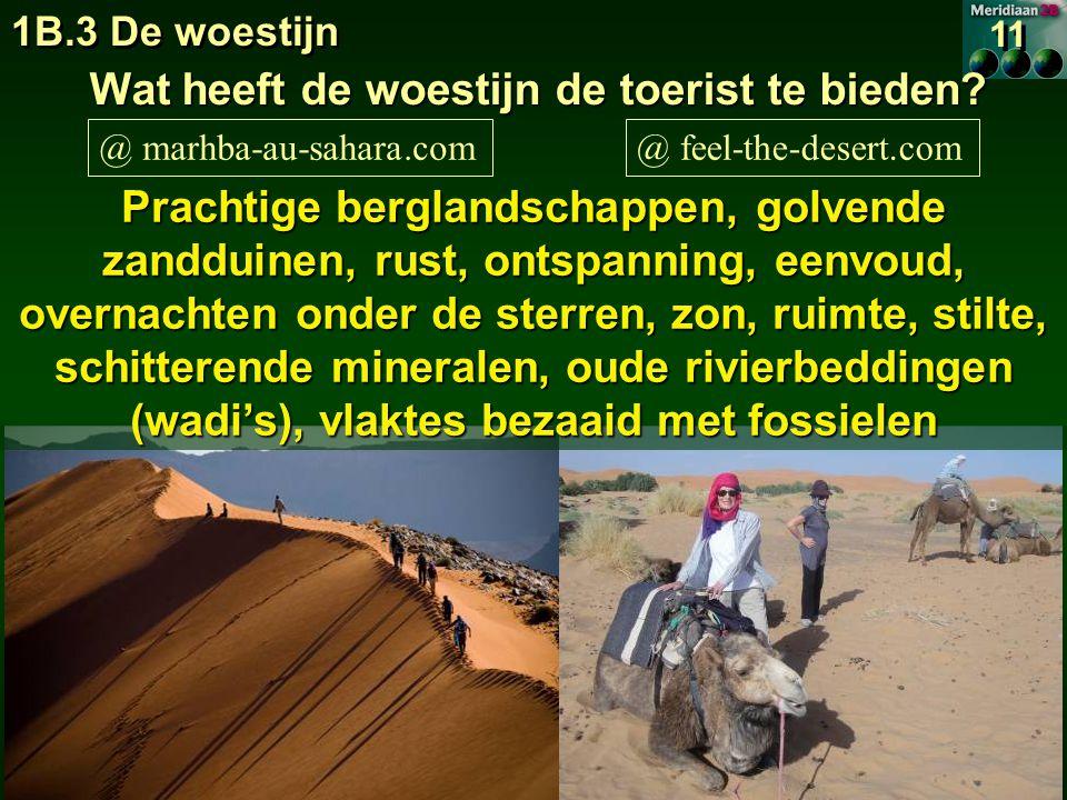 1B.3 De woestijn 11 Wat heeft de woestijn de toerist te bieden.
