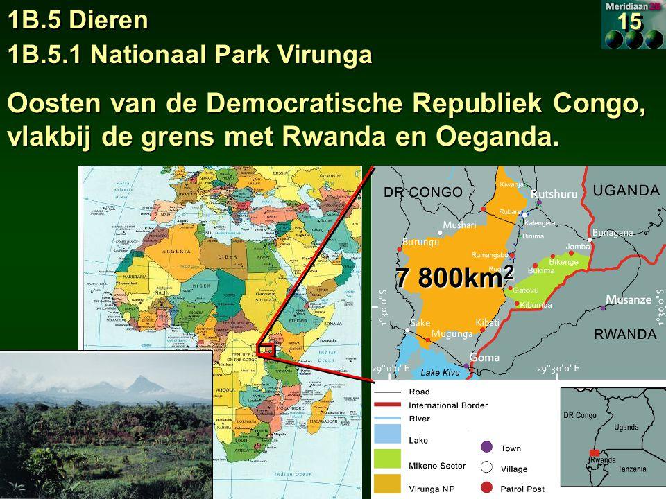 1B.5.1 Nationaal Park Virunga 1B.5 Dieren 15 Oosten van de Democratische Republiek Congo, vlakbij de grens met Rwanda en Oeganda.