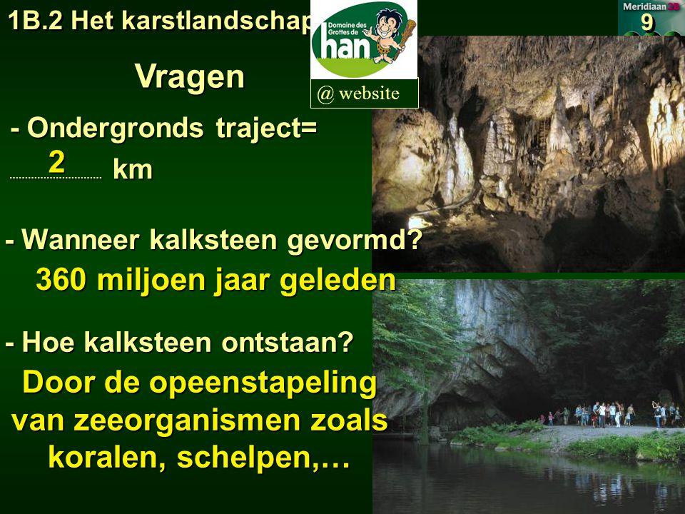1B.2 Het karstlandschap 9 9 @ website Insijpelend water  druipstenen - Afhangende = stalagtiet - Staande = stalagmiet (Fr.: tomber) (Fr.: monter) Groeien enkele cm per eeuw.