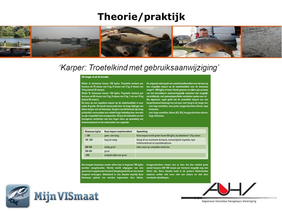 Theorie/praktijk • Verschraling van het water, door het verminderen van fosfaten/nitraten.