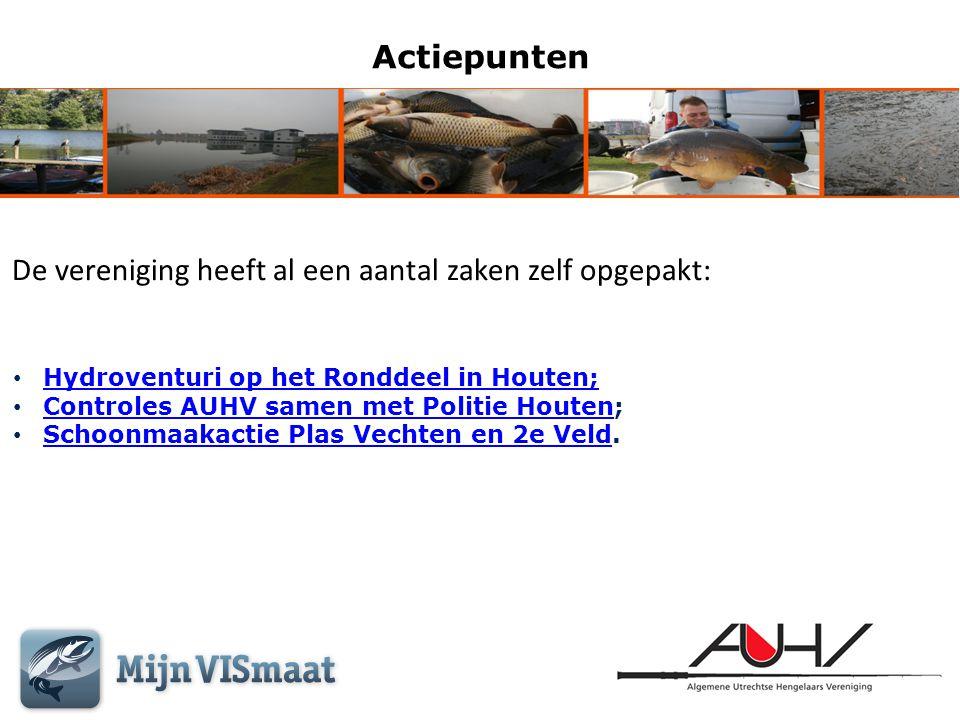 Actiepunten De vereniging heeft al een aantal zaken zelf opgepakt: • Hydroventuri op het Ronddeel in Houten; Hydroventuri op het Ronddeel in Houten; •