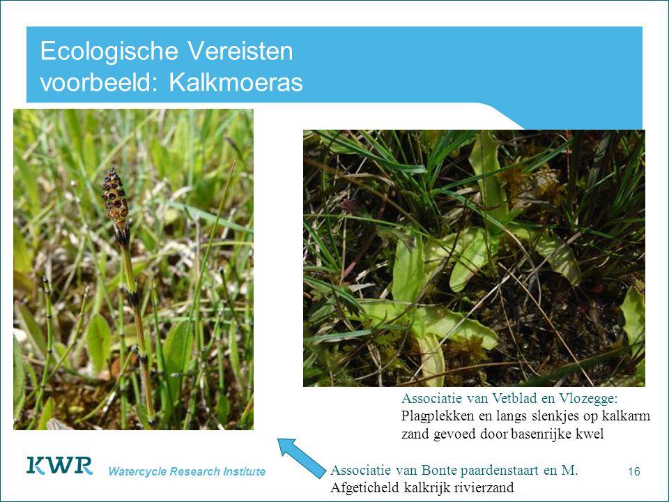 16 Watercycle Research Institute Ecologische Vereisten voorbeeld: Kalkmoeras Associatie van Bonte paardenstaart en M. Afgeticheld kalkrijk rivierzand