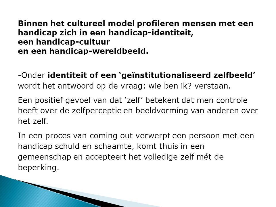 Binnen het cultureel model profileren mensen met een handicap zich in een handicap-identiteit, een handicap-cultuur en een handicap-wereldbeeld.