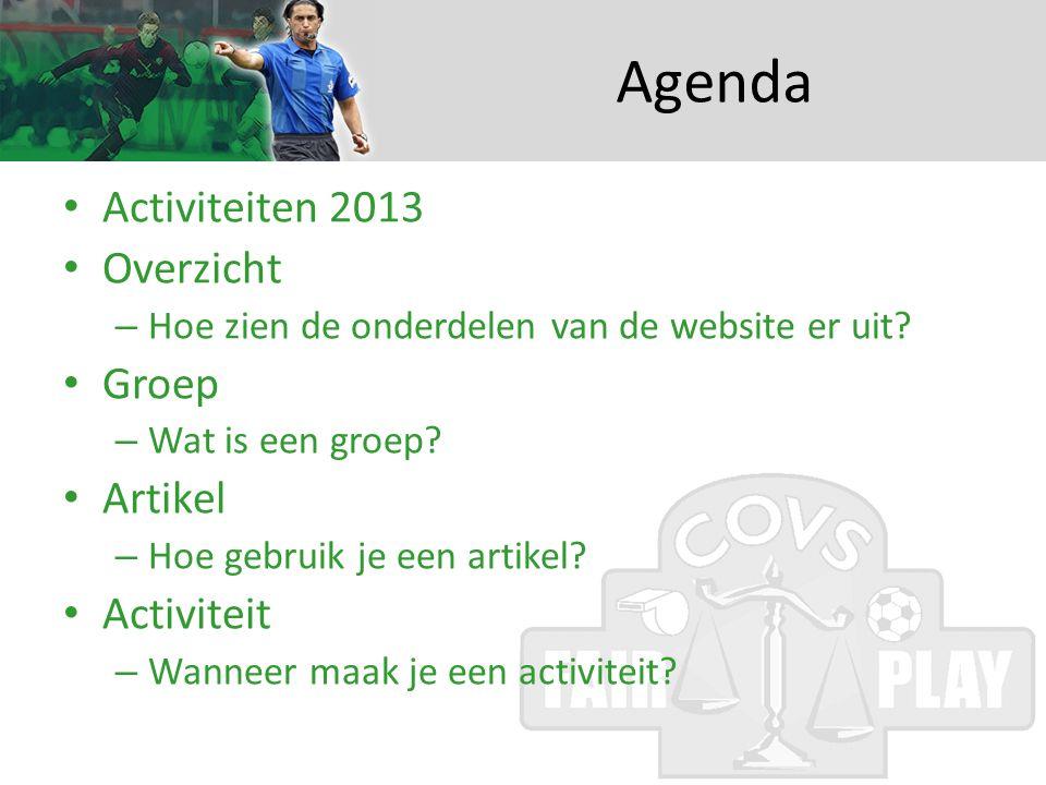 Agenda • Activiteiten 2013 • Overzicht – Hoe zien de onderdelen van de website er uit.