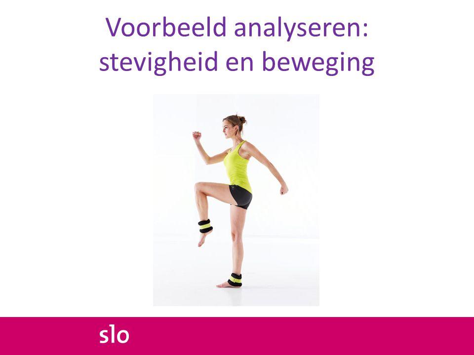 Voorbeeld analyseren: stevigheid en beweging