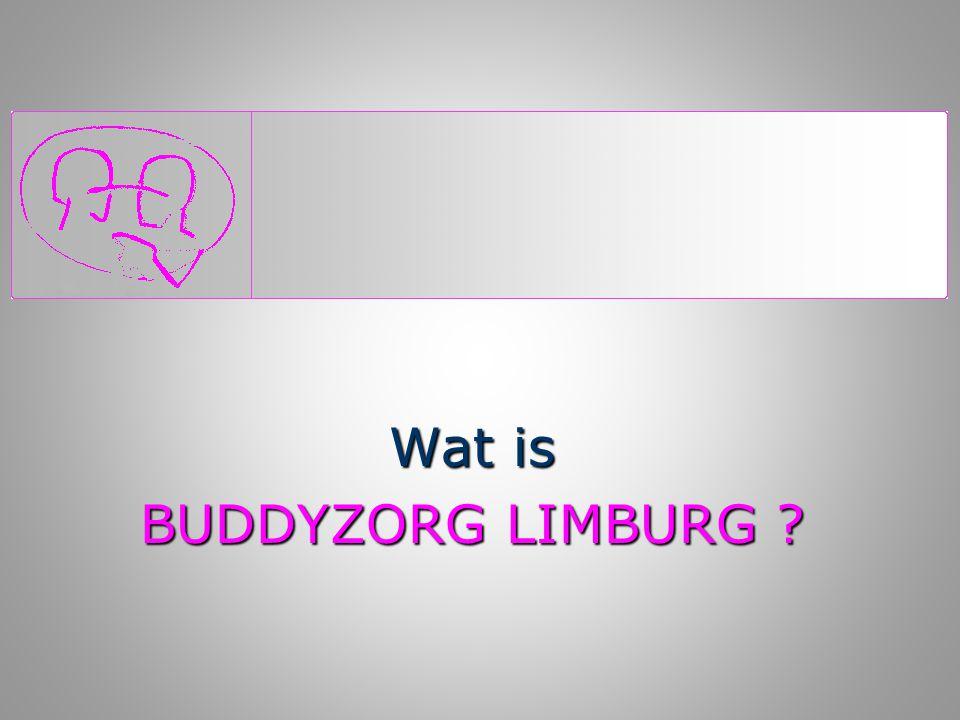 Buddyzorg Limburg   is een provinciale vrijwilligersorganisatie   die mensen één op één inzet   in de thuissituatie   voor ongeveer 4 uur per week
