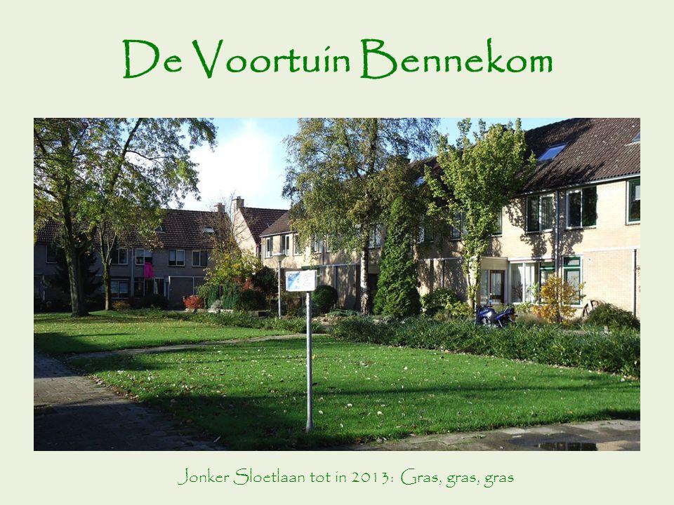 De Voortuin Bennekom Jonker Sloetlaan tot in 2013: Gras, gras, gras