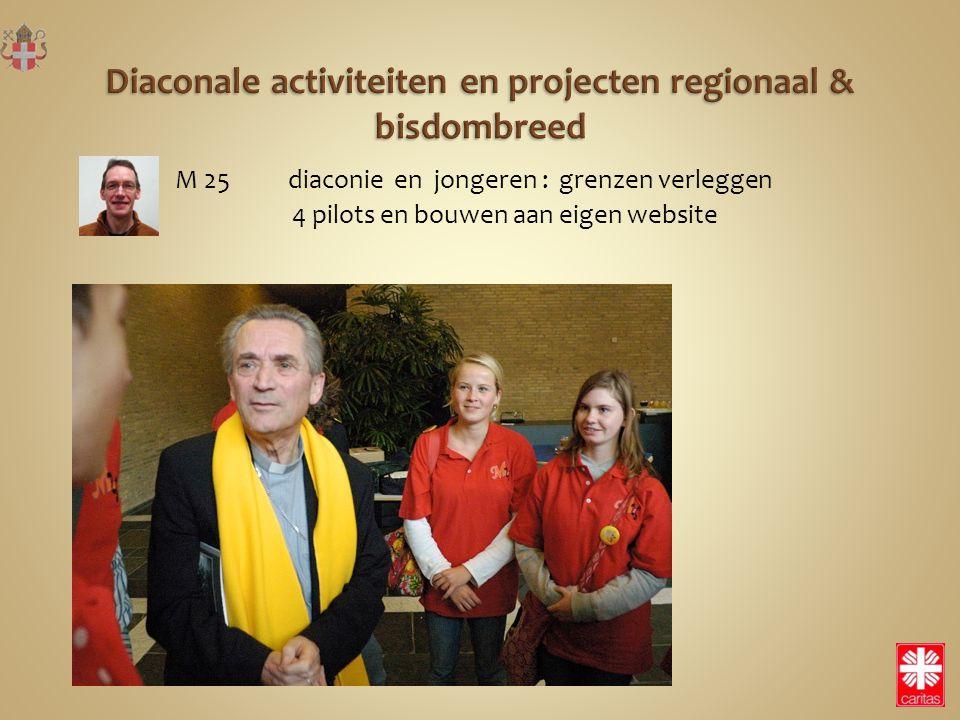 M 25 diaconie en jongeren : grenzen verleggen 4 pilots en bouwen aan eigen website