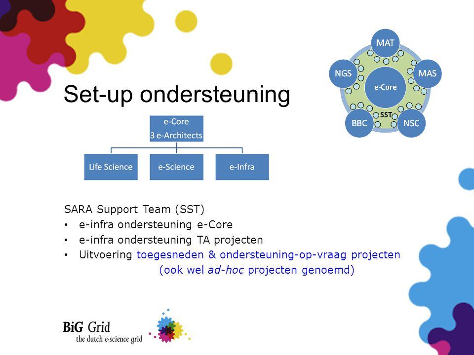 Set-up ondersteuning SARA Support Team (SST) • e-infra ondersteuning e-Core • e-infra ondersteuning TA projecten • Uitvoering toegesneden & ondersteun