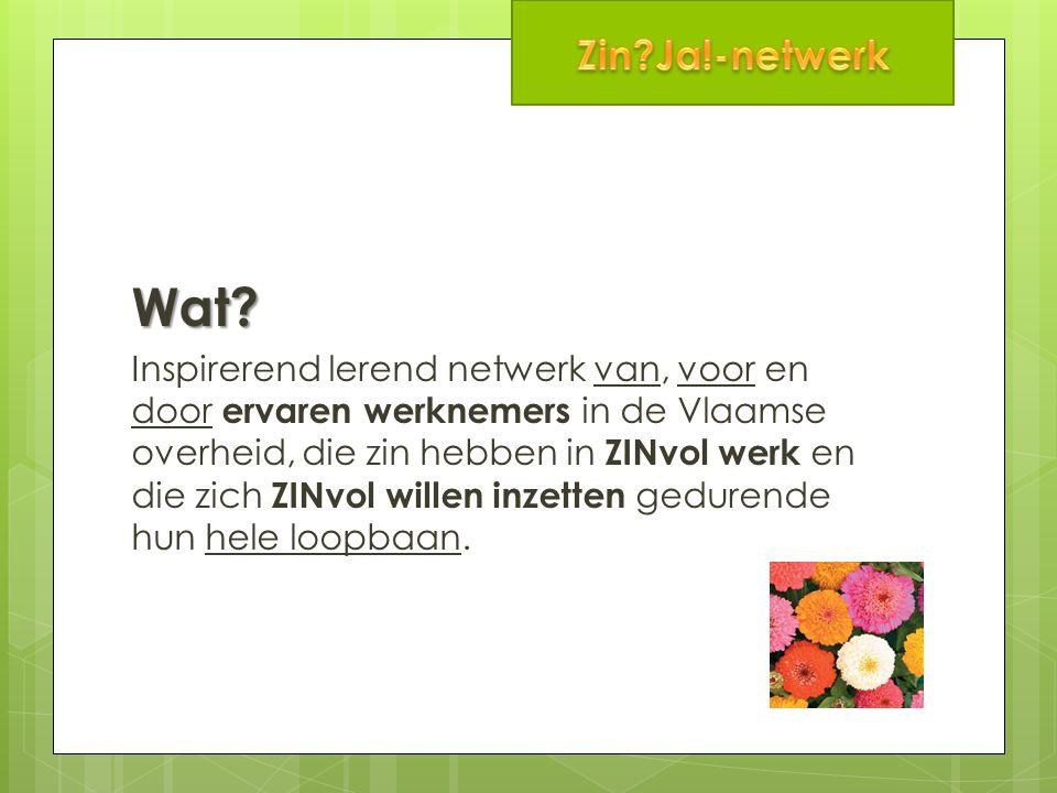 Wat? Inspirerend lerend netwerk van, voor en door ervaren werknemers in de Vlaamse overheid, die zin hebben in ZINvol werk en die zich ZINvol willen i