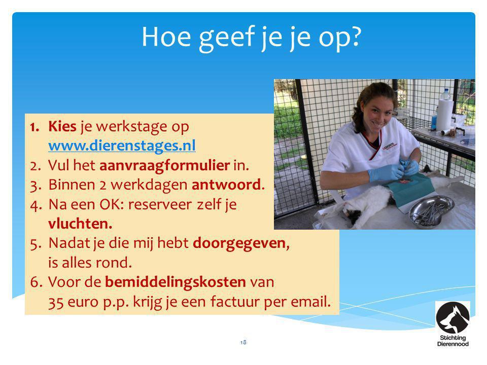 Hoe geef je je op? 18 1.Kies je werkstage op www.dierenstages.nl www.dierenstages.nl 2.Vul het aanvraagformulier in. 3.Binnen 2 werkdagen antwoord. 4.