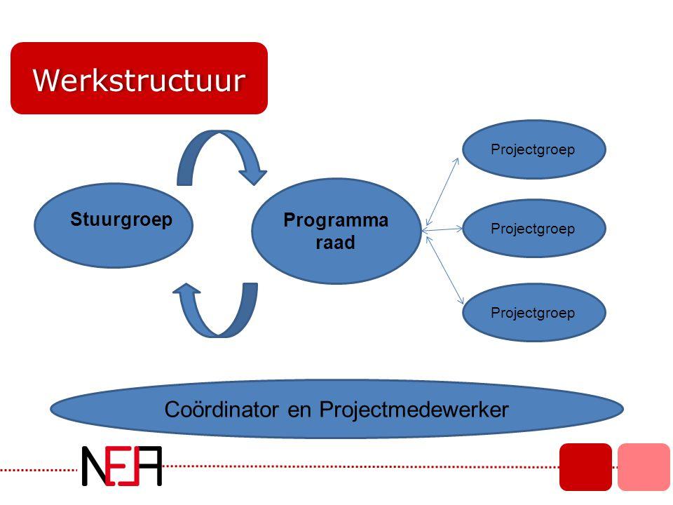 Werkstructuur Stuurgroep Programma raad Projectgroep Coördinator en Projectmedewerker