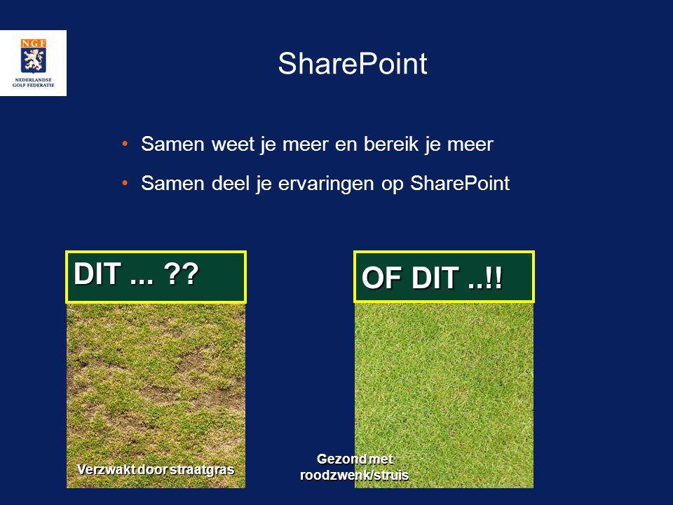 SharePoint •Samen weet je meer en bereik je meer •Samen deel je ervaringen op SharePoint DIT... ?? OF DIT..!! Verzwakt door straatgras Gezond met rood