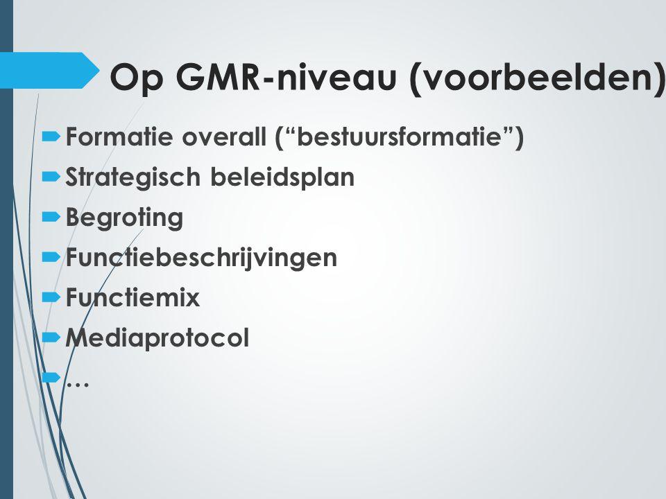 Op GMR-niveau (voorbeelden)  Formatie overall ( bestuursformatie )  Strategisch beleidsplan  Begroting  Functiebeschrijvingen  Functiemix  Mediaprotocol ……
