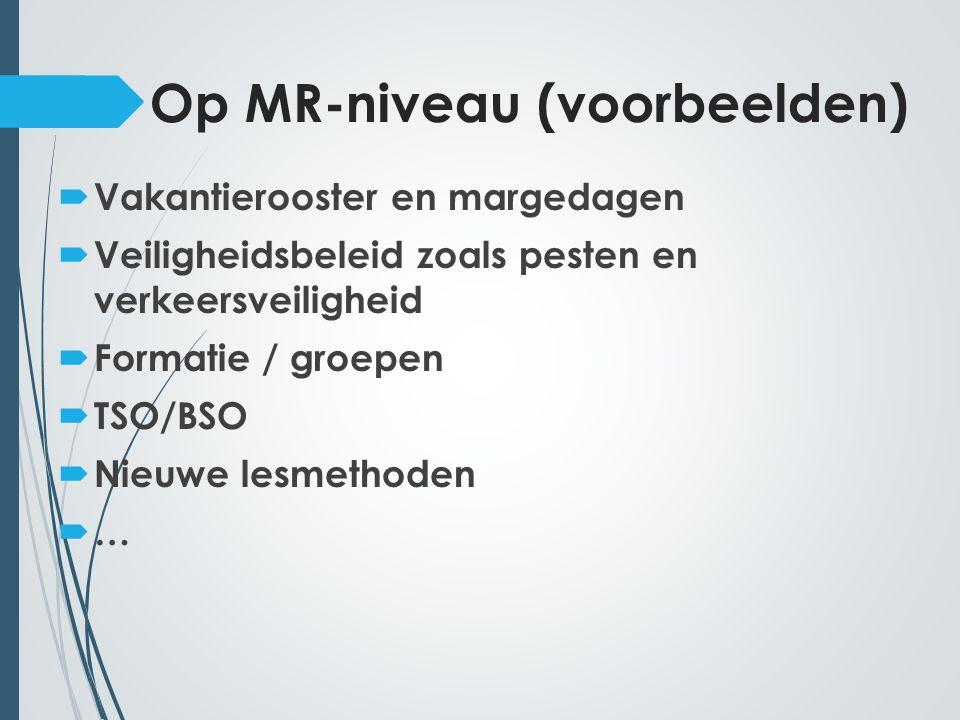 Op MR-niveau (voorbeelden)  Vakantierooster en margedagen  Veiligheidsbeleid zoals pesten en verkeersveiligheid  Formatie / groepen  TSO/BSO  Nieuwe lesmethoden ……