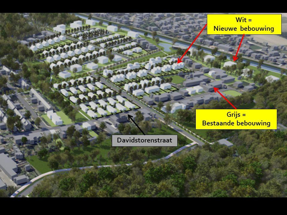 Grijs = Bestaande bebouwing Wit = Nieuwe bebouwing Davidstorenstraat