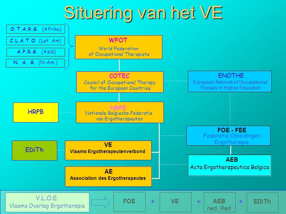 Situering van het VE COTEC Council of Occupational Therapy for the European Countries ENOTHE European Network of Occupational Therapy in Higher Educat