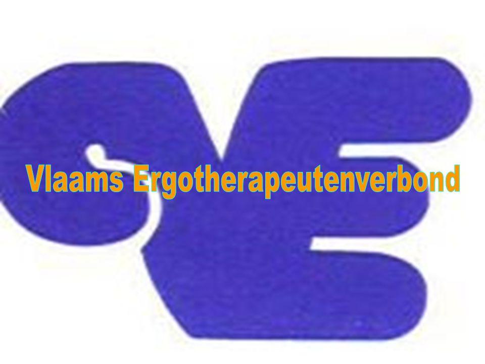  met federale (via NBFE) en regionale ministeries en beleidsorganisaties, – RIZIV, – Vlaams Fonds, – Mutualiteiten, Wit-Gele Kruis, – Huisartsenorganisaties, – Ministerie van Onderwijs – NRPB  schreef & onderhandelde samen met de Waalse collega's de ergostatuten (8 juli 1996),  Neemt actief deel aan onderhandelingen voor een beperkte ERGONOMENCLATUUR voor de thuiszorg (via NBFE)  Met andere gezondheidszorgberoepen omtrent functieprofielen in bepaalde interventiedomeinen Het VE ONDERHANDELT