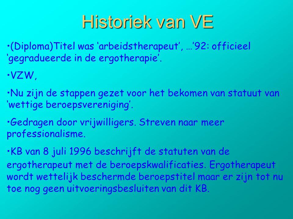 Historiek van VE •(Diploma)Titel was 'arbeidstherapeut', …'92: officieel 'gegradueerde in de ergotherapie'. •VZW, •Nu zijn de stappen gezet voor het b