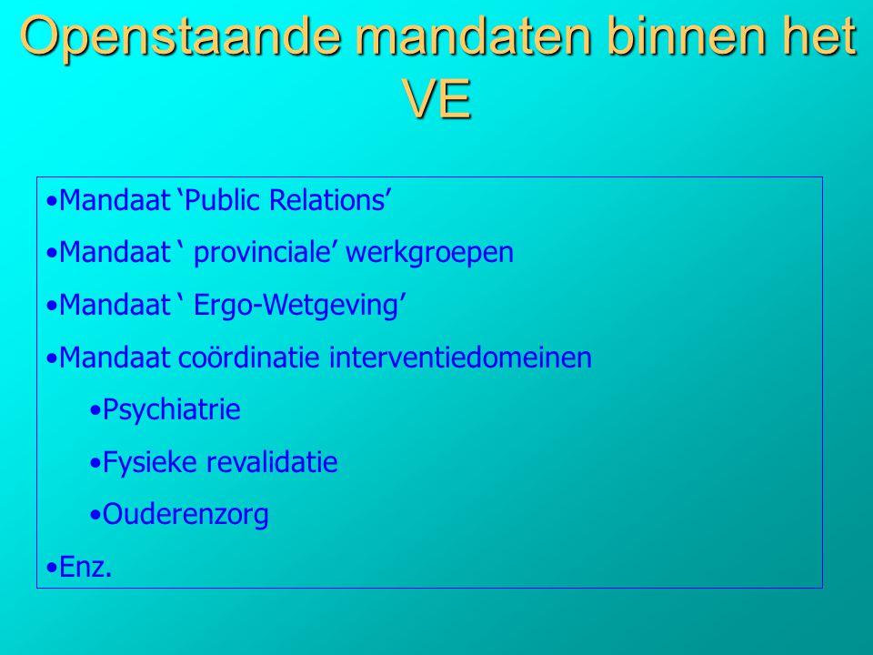 Openstaande mandaten binnen het VE •Mandaat 'Public Relations' •Mandaat ' provinciale' werkgroepen •Mandaat ' Ergo-Wetgeving' •Mandaat coördinatie int