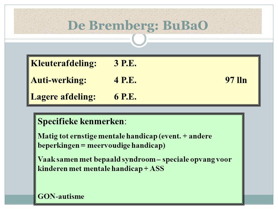 De Bremberg: BuBaO Specifieke kenmerken: Matig tot ernstige mentale handicap (event. + andere beperkingen = meervoudige handicap) Vaak samen met bepaa