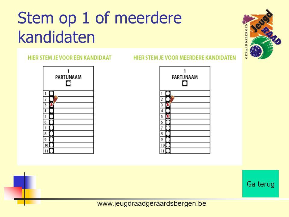 www.jeugdraadgeraardsbergen.be Stem op 1 of meerdere kandidaten Ga terug