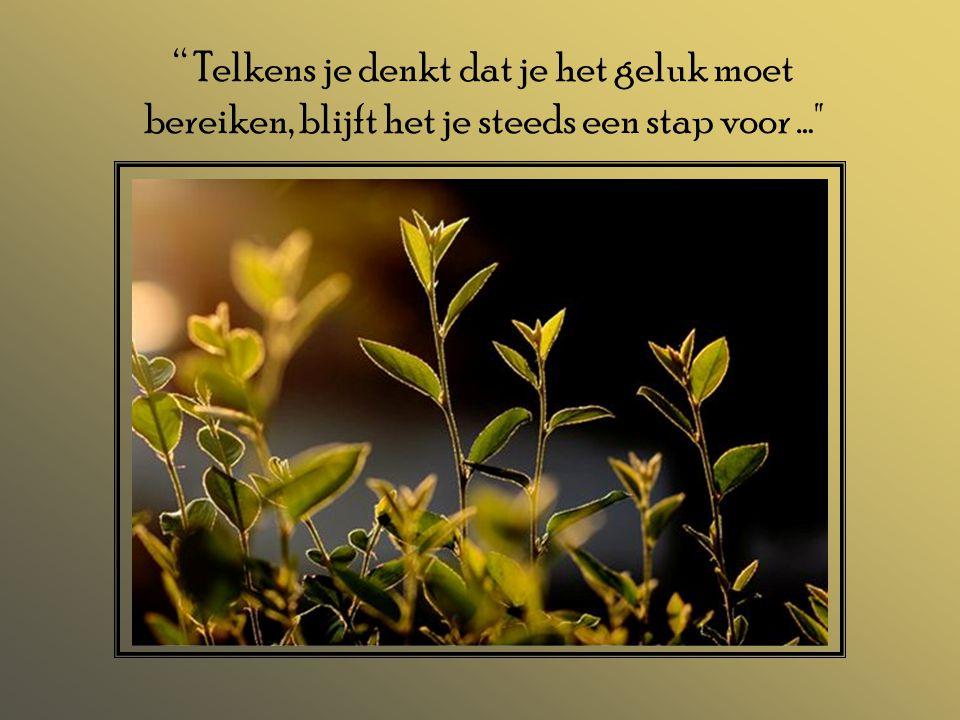 """"""" Telkens je denkt dat je het geluk moet bereiken, blijft het je steeds een stap voor …"""
