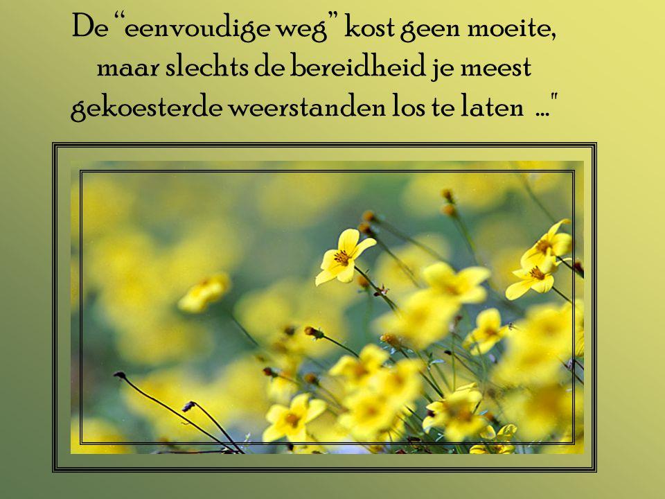 De eenvoudige weg kost geen moeite, maar slechts de bereidheid je meest gekoesterde weerstanden los te laten...