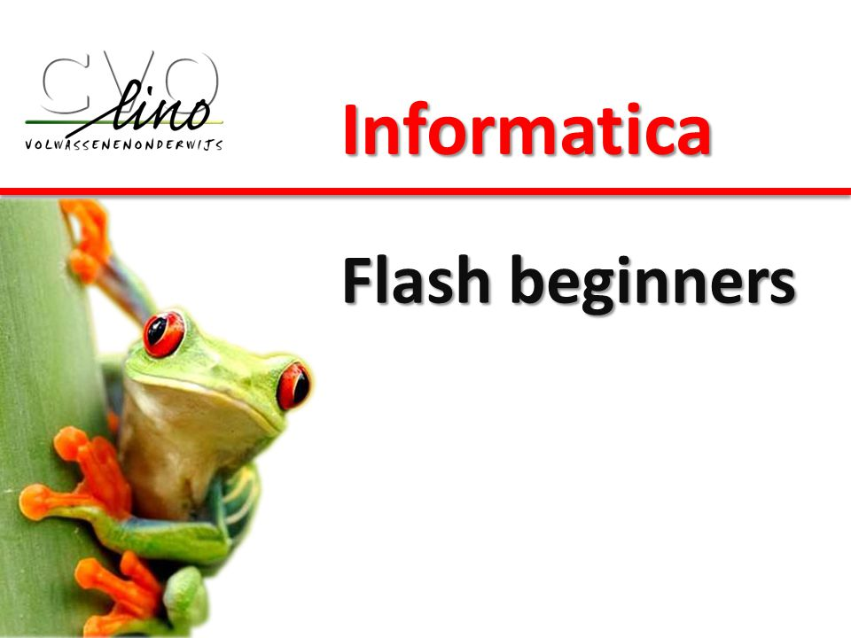 Informatica Flash beginners