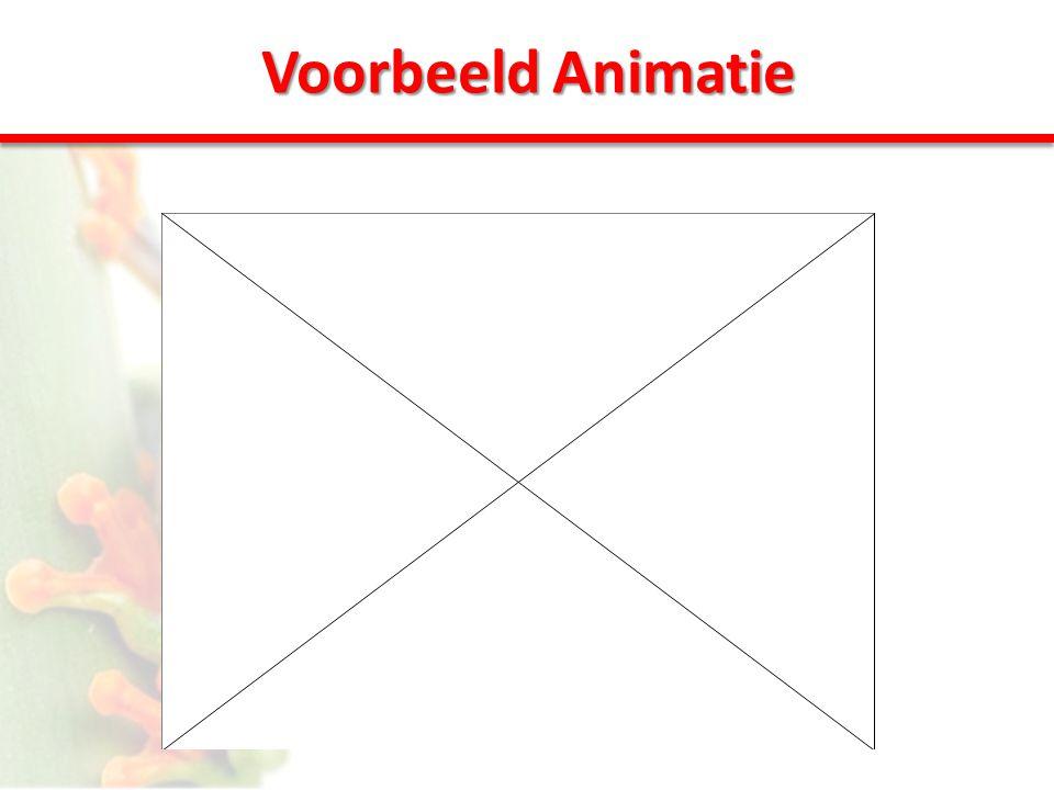 Voorbeeld Animatie