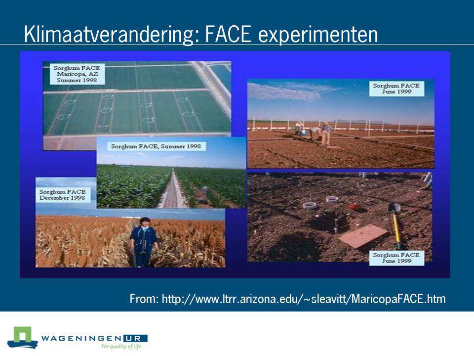 Klimaatverandering: FACE experimenten From: http://www.ltrr.arizona.edu/~sleavitt/MaricopaFACE.htm