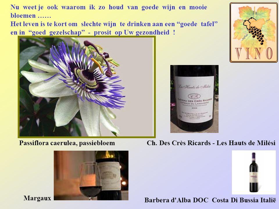 Als heerlijk dessertwijn of pousse-café Pineau des Charentes Fles Poire William met peer in kistje Pellehaut Gros Mansengdruif Muscat de Beaumes de Ve