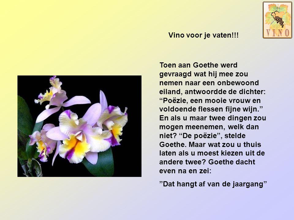 """De prachtigste maanden, voor bloemen en planten, zijn beslist: """"De maanden mei en juni"""" Wijnen Raf Krols"""