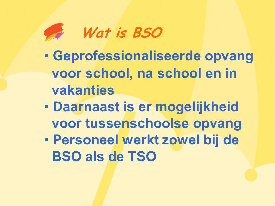 Wat is BSO • Geprofessionaliseerde opvang voor school, na school en in vakanties • Daarnaast is er mogelijkheid voor tussenschoolse opvang • Personeel werkt zowel bij de BSO als de TSO