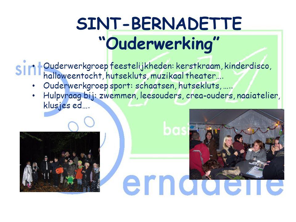"SINT-BERNADETTE ""Ouderwerking"" • Ouderwerkgroep feestelijkheden: kerstkraam, kinderdisco, halloweentocht, hutsekluts, muzikaal theater…. • Ouderwerkgr"