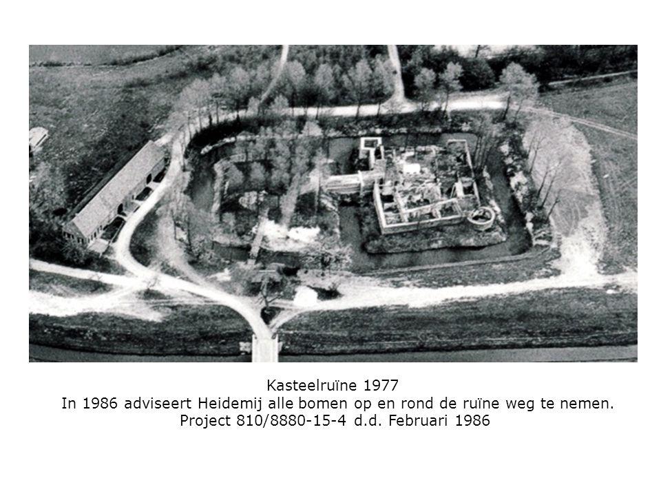Kasteelruïne 1977 In 1986 adviseert Heidemij alle bomen op en rond de ruïne weg te nemen.