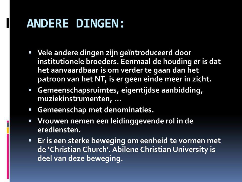 ANDERE DINGEN:  Vele andere dingen zijn geïntroduceerd door institutionele broeders. Eenmaal de houding er is dat het aanvaardbaar is om verder te ga