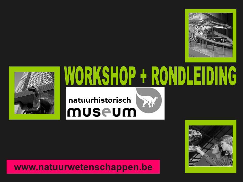 natuurhistorisch www.natuurwetenschappen.be