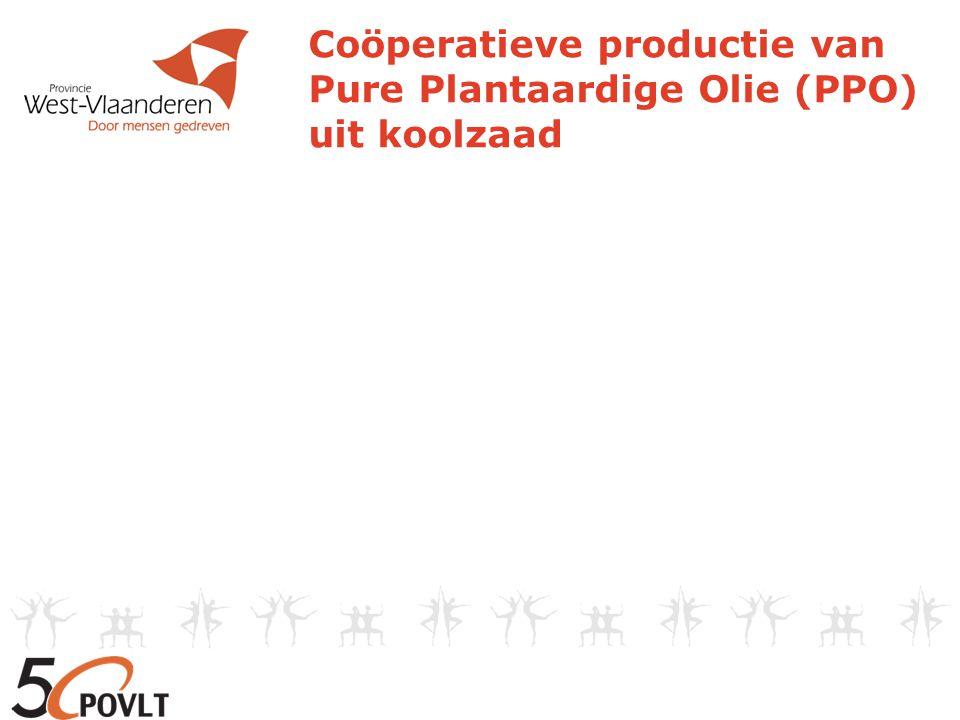  Doel Beauvent cvba: rationeel en duurzaam energiegebruik  Projecten in Wind, Zon, Koolzaad en Energiebesparing  Coöperatieve Vennootschap  Project Koolzaad: sinds 2005 - korte keten productie van bio-brandstof - verkoop aan vennoten: 0.8 -> 0.9 €/l accijnsvrij Coöperatieve productie van Pure Plantaardige Olie (PPO) uit koolzaad